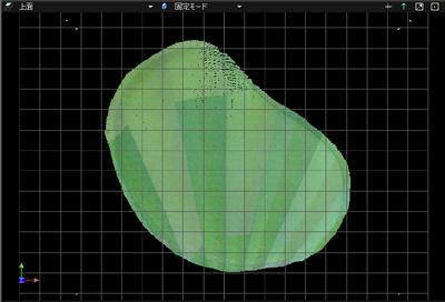 GolfGreen5